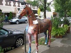 Portland_colored horse