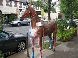 Portland_colored horse