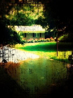 Our house_playing with filters