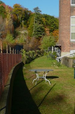 Eclipse_backyard garden area1