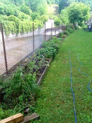 All garden beds